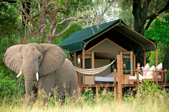 Sanctuary Stanley's Camp, Botswana