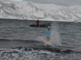 The Polar Plunge–I did it – Day10