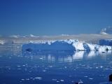 The Icebergs