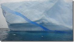 Underwater Camera 2012-03-13 050