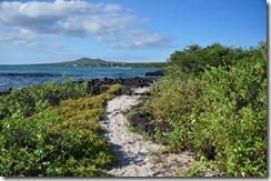 Floreana Island 2012-05-08 093
