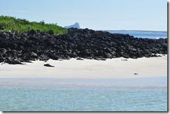 Isla del los Lobos 2012-05-07 038